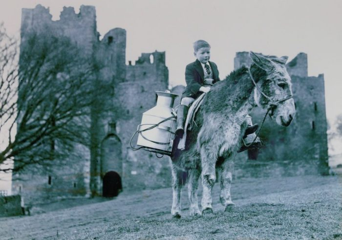 Jimmy the donkey with Terry Dodd, Castle Bolton. 1950. Courtesy of Frank Knowles