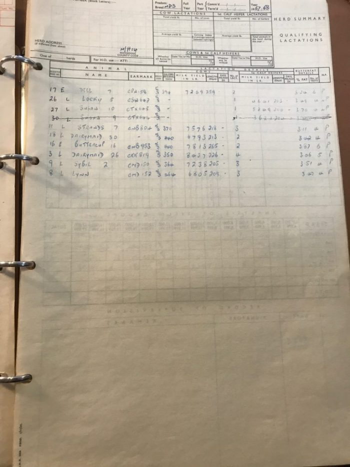 Milk record sheet from Lowlands farm, Askrigg. 1967. Collection of Dales Countryside Museum