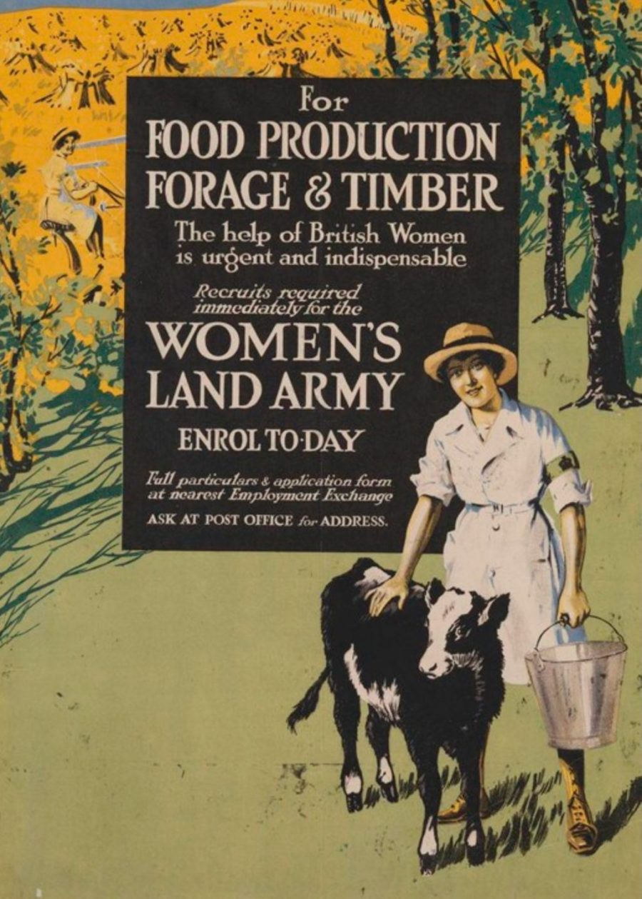 Women's Land Army poster. With permission of The National Archives