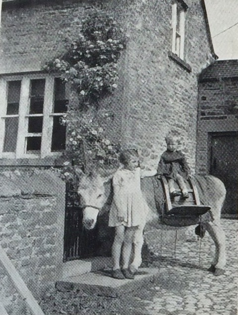 Milk delivery donkey, Castle Bolton, Country Life magazine. Courtesy of John Duncalfe