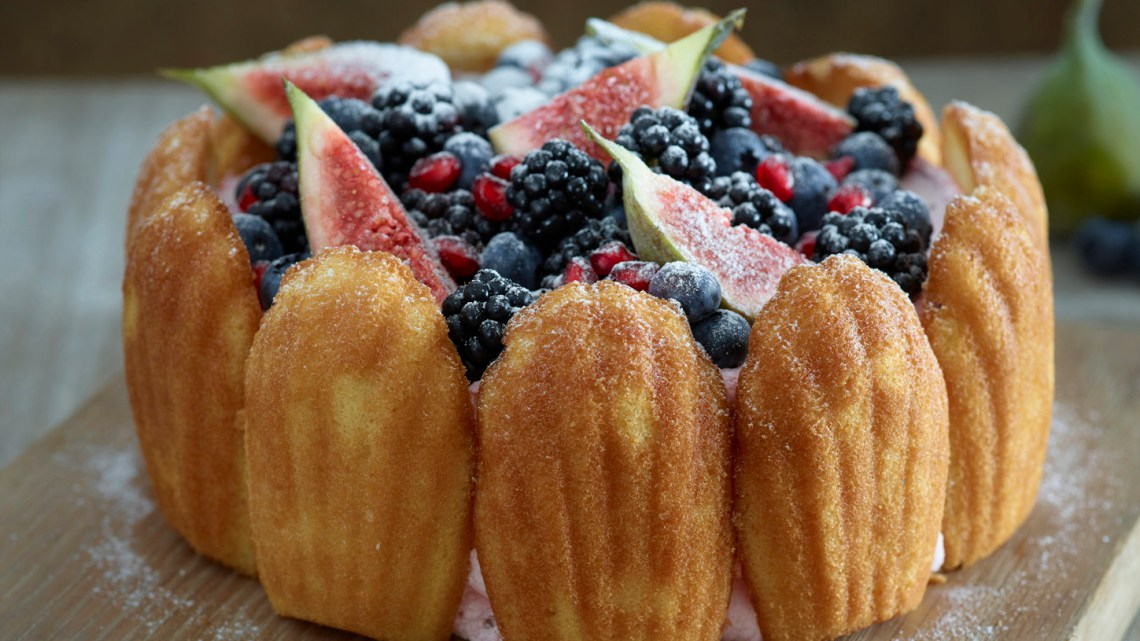 Madeleine Charlotte cake