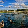 Badger Lakes Northumberland
