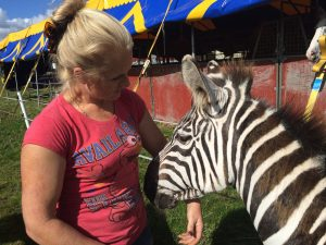 Ringmistress, Petra Jackson, has said that the the animals at the circus are being well cared for.