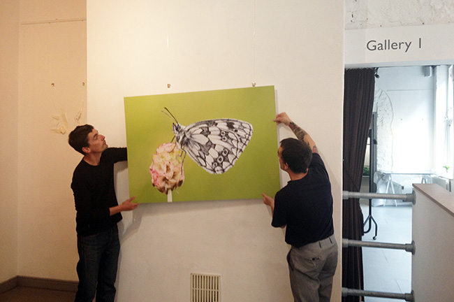 Setting up the exhibition in the White Cloth Gallery