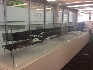 A 1,000-year-old logboat on display in Wakefield Library