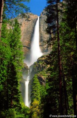 Yosemite Falls in Motion