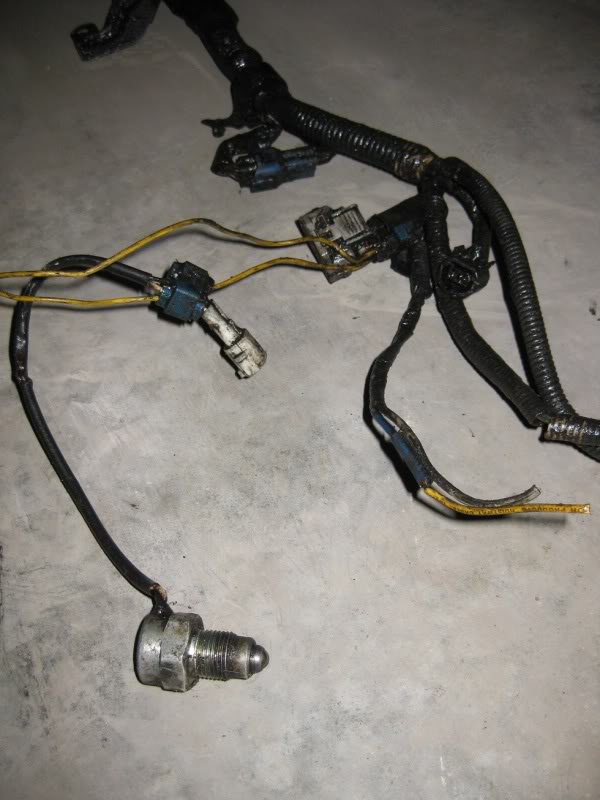 Wiring Harness Amp Transmission Transfer
