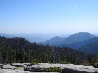 Uitzicht Beetle Rock