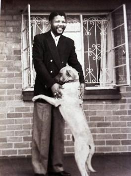 Risultati immagini per nelson Mandela cane