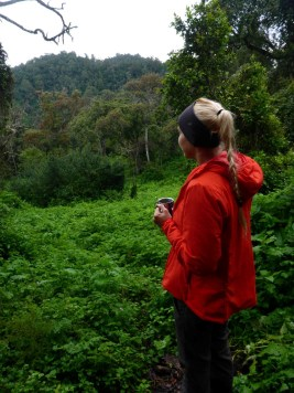 Coffee break Kilimanjaro
