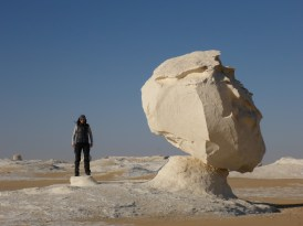 white sculpture desert