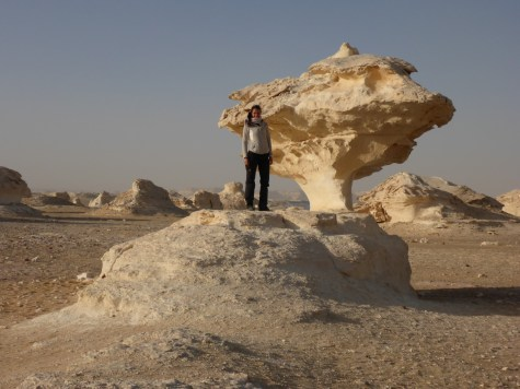 stone scultpture egypt