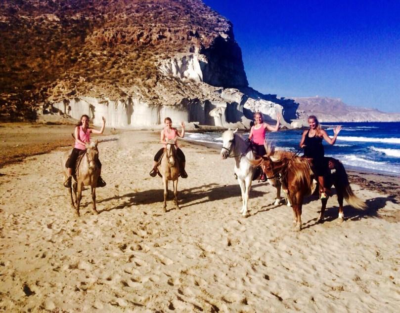 horses beach ride group