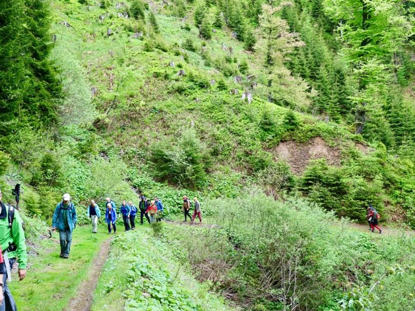 Hiking Austria Nationalpark