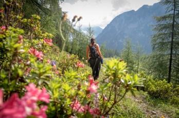 Flachauwinkl hiking