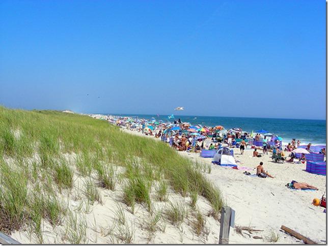 纽约州火岛国家海岸 Lighthouse Beach