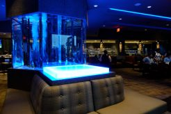 Exotic Fish tank in Kona grill dolphin mall younfolded blog