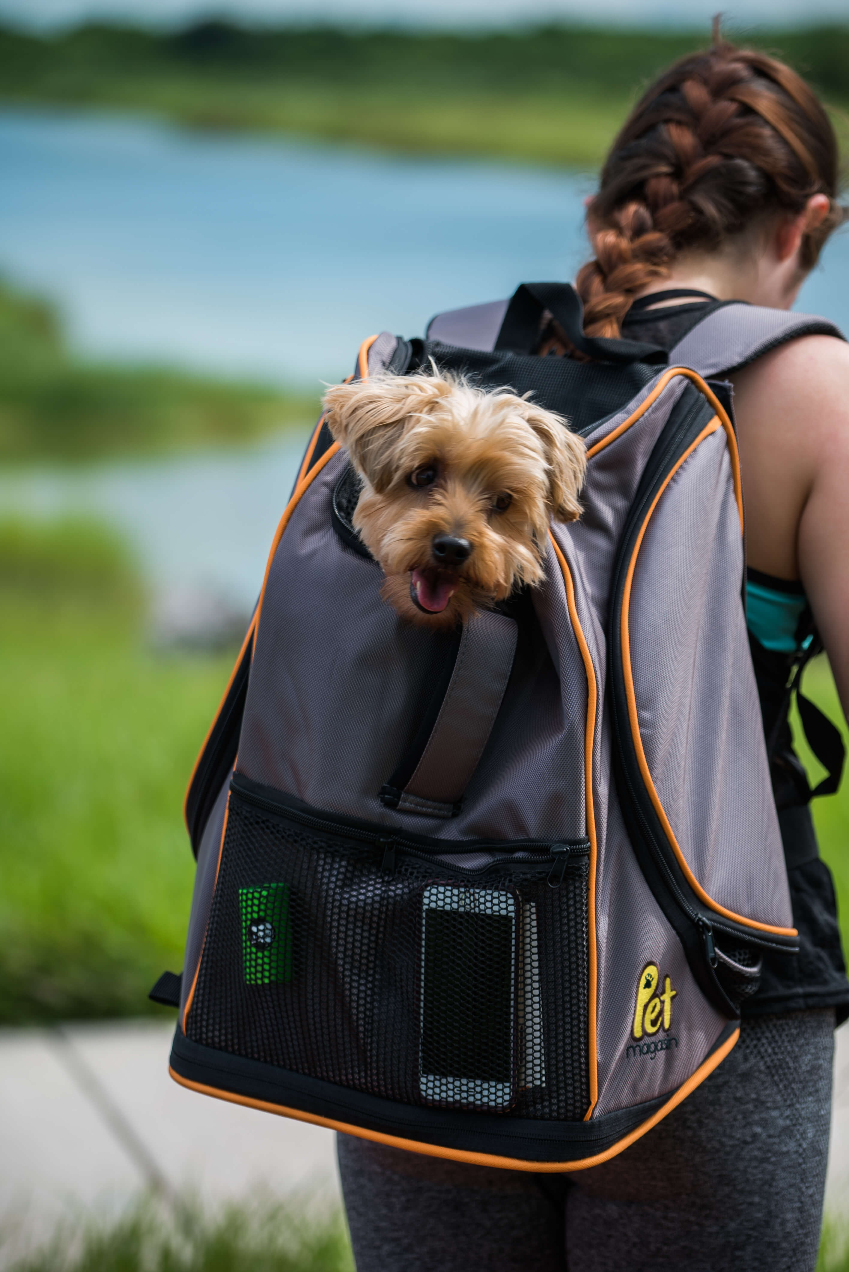 Lambo Backpack from Pet Magasin pet exercises younfolded blog