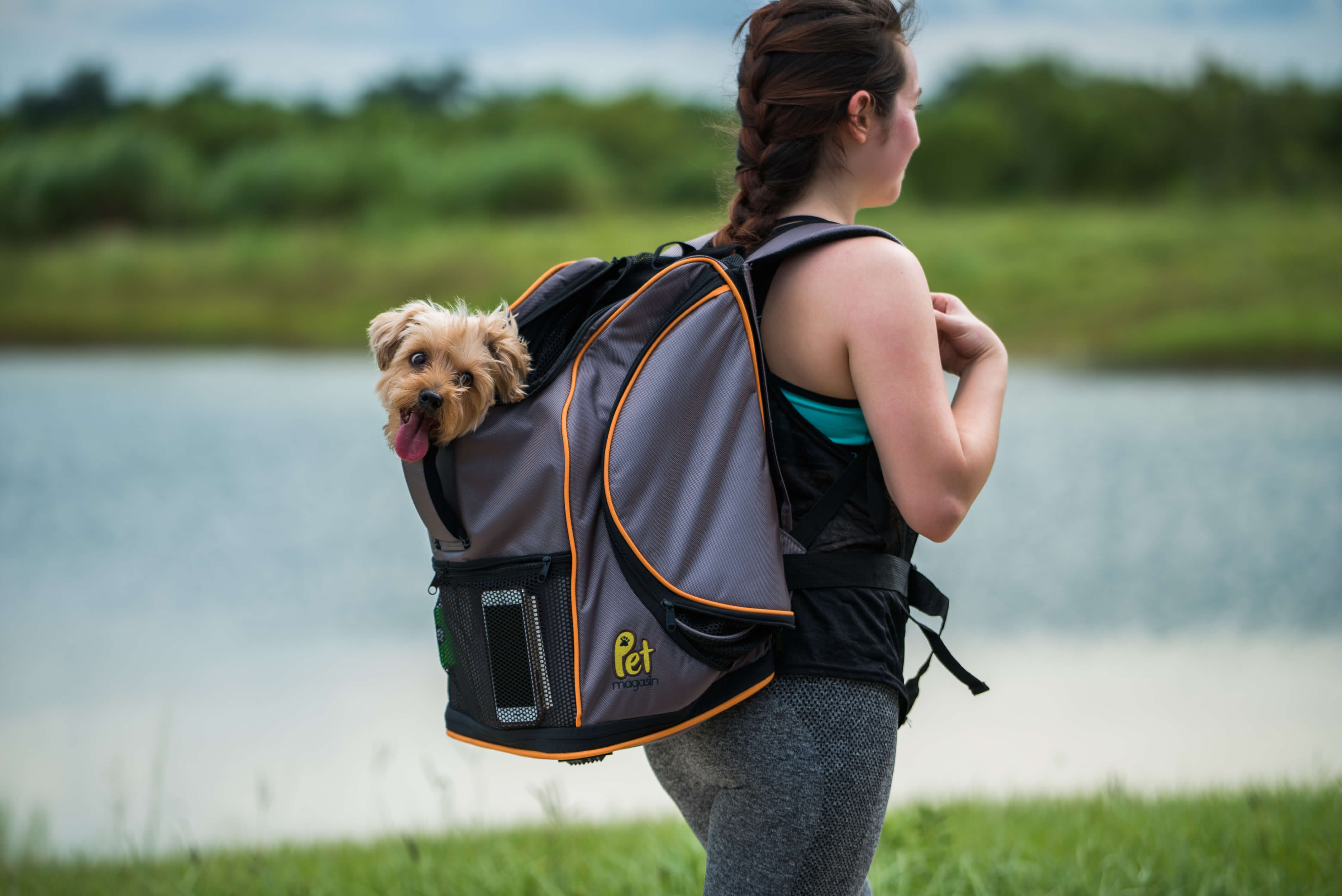 Lambo backpack worn on back dog carrier younfolded blog