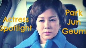 Actress Spotlight: Park Jun Geum