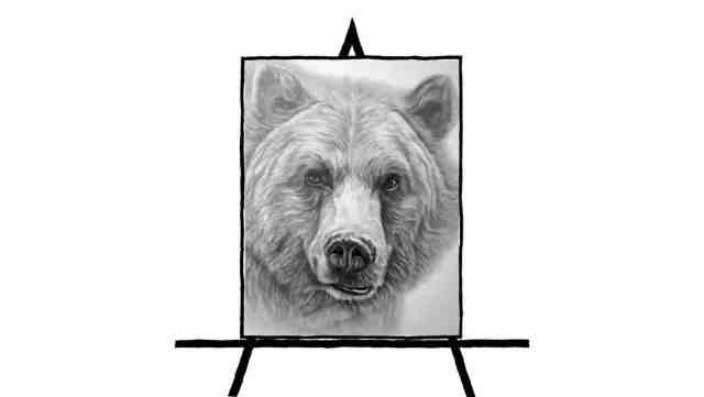 black and white pencil sketch of bear