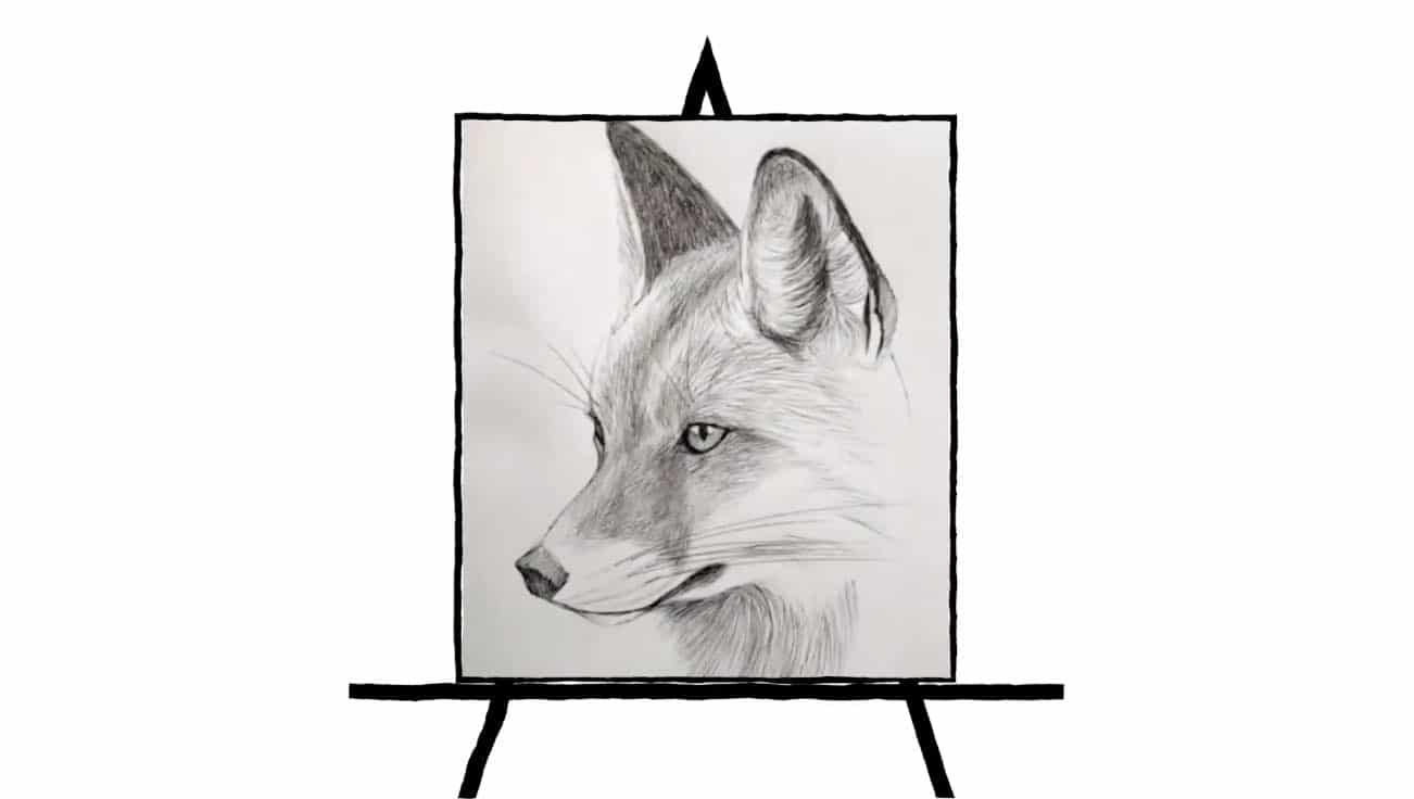 black and white pencil sketch of fox drawing