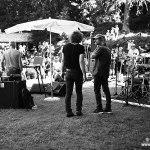 Palp Festival 14.08.2016