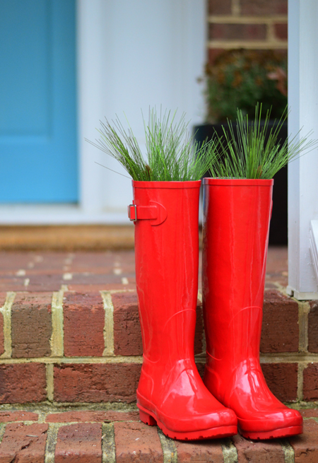 Tree-Boots-With-The-Fir