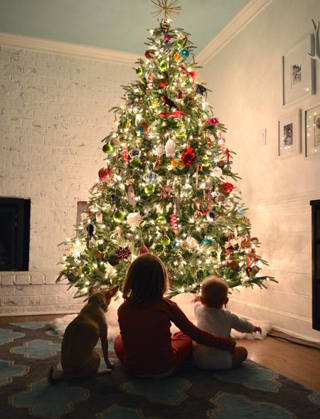 Tree-Kids-2014