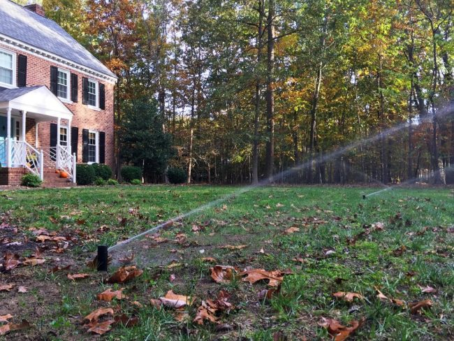 irrigation system installation regrowing grass in front yard sprinkler heads on