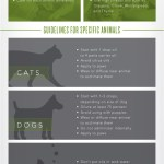 Animals And Essential Oils What You Need To Know