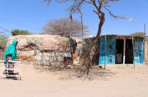 Somaliland and Somalia: A house and shop in Statehouse Internally Displaced Persons Camp