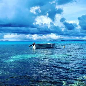 11 Things To Know Before You Go To Tuvalu Young Pioneer Tours
