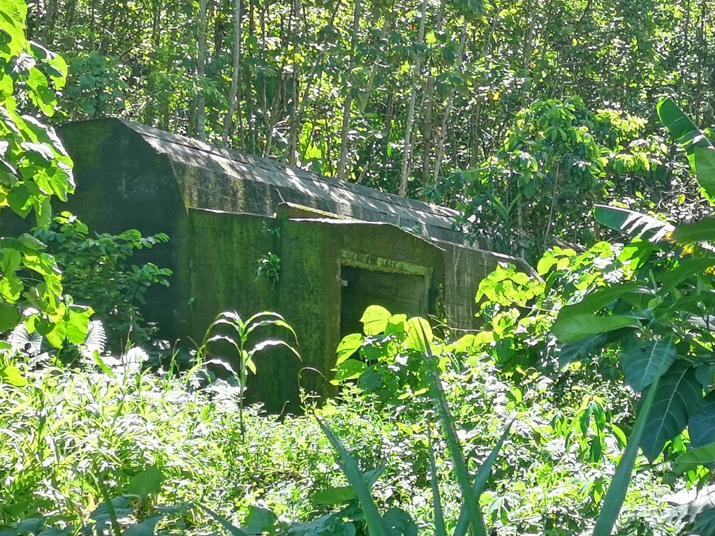 A Japanese bunker by Kunde beach, not far from Admiral Yamamoto's plane crash site