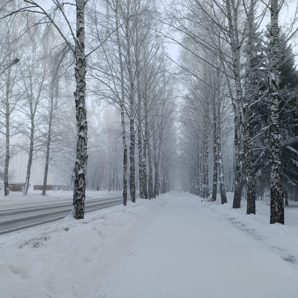 Siberian Winter