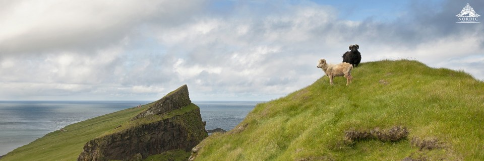 Faroe Islands Wedding Planner and Photographer - Your Adventure Wedding-1