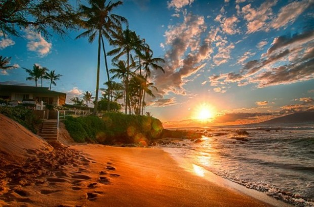 Flowers Sunset Hawaii Beach Tropical