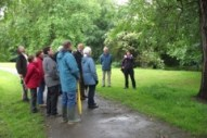 guided walk image