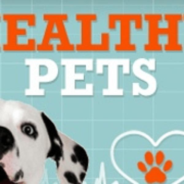 healthy-pets_1429727493902.png