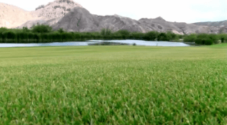 Lajitas Golf