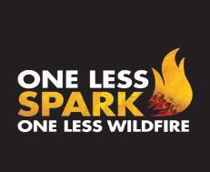 SparkWildfire_1556728619187.jpg