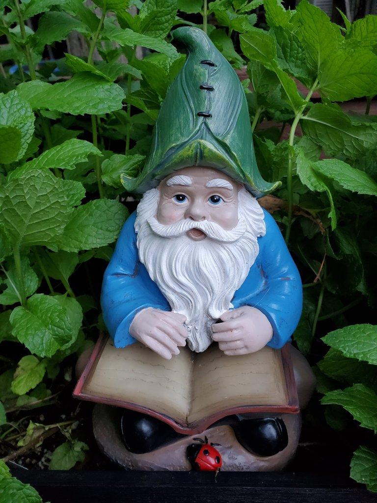 Garden gnome statue with book