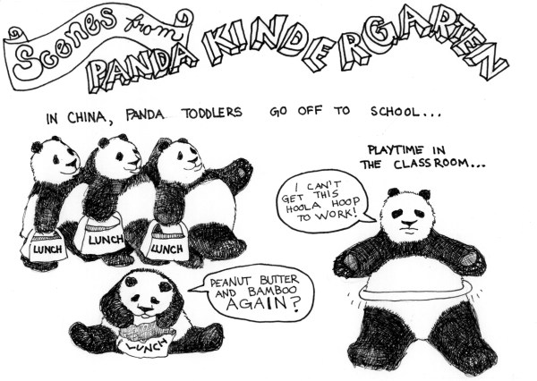 2009 panda kindergarten class