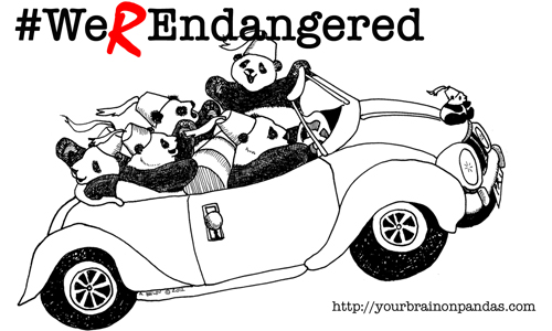 What could be more endangered than joyriding pandas NOT wearing seat belts?