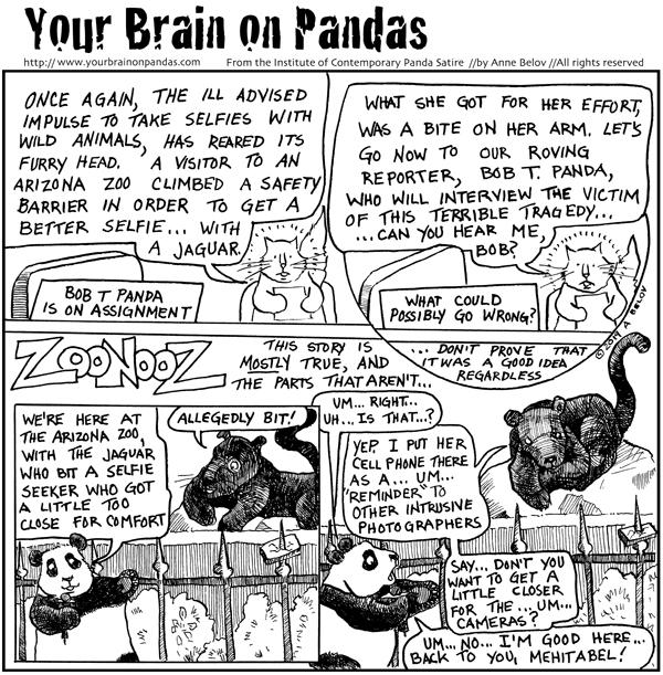 Arizona Jaguar bites selfie seeker Archives - The Panda