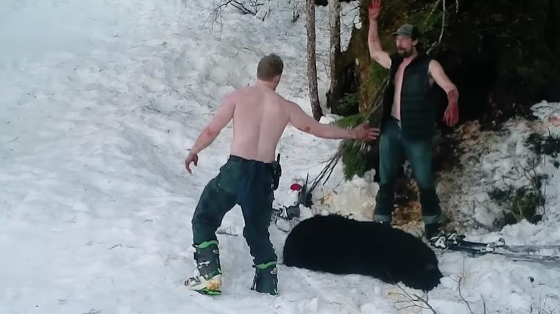 human+society+edited+dps+photo+bear+killing+renner+owen+andrew_1553894821479.jpg
