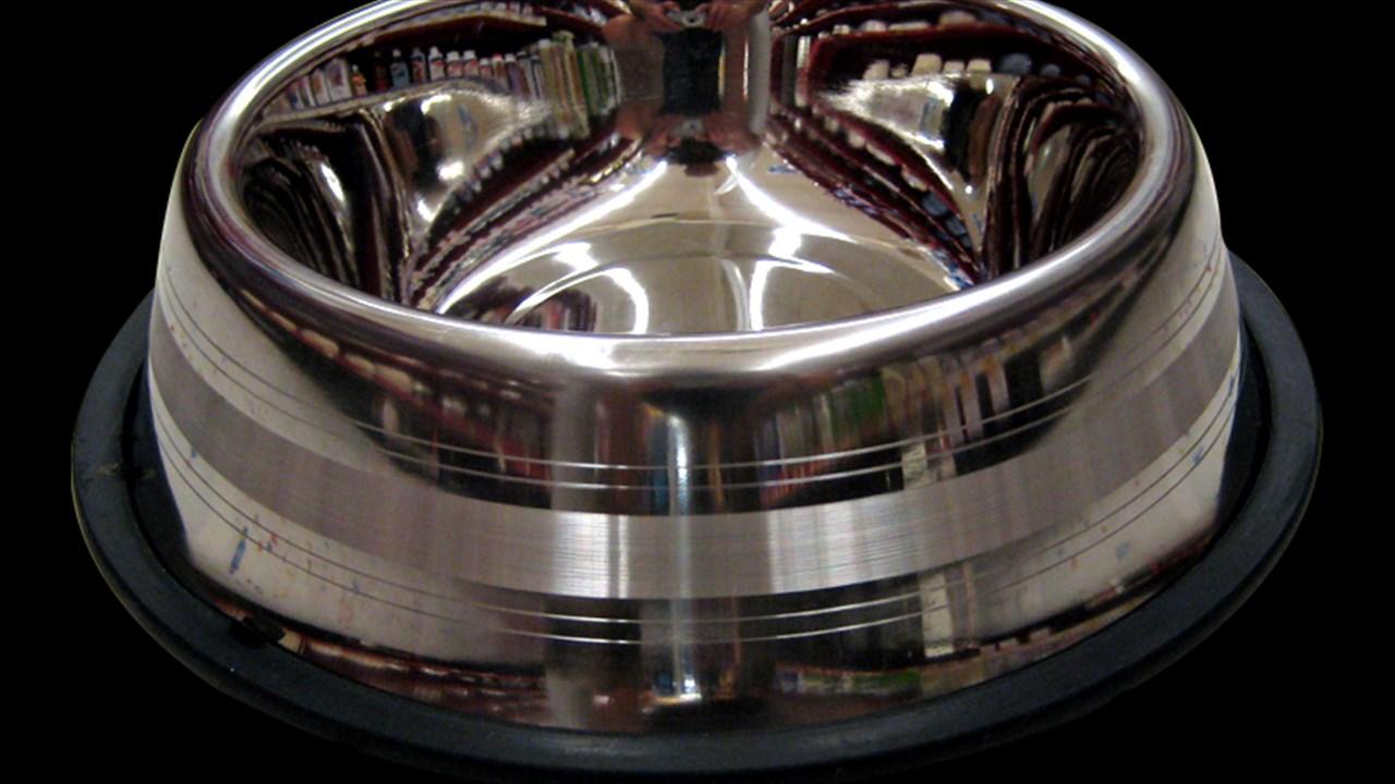 Dog Bowl_1556058860978.jpg.jpg