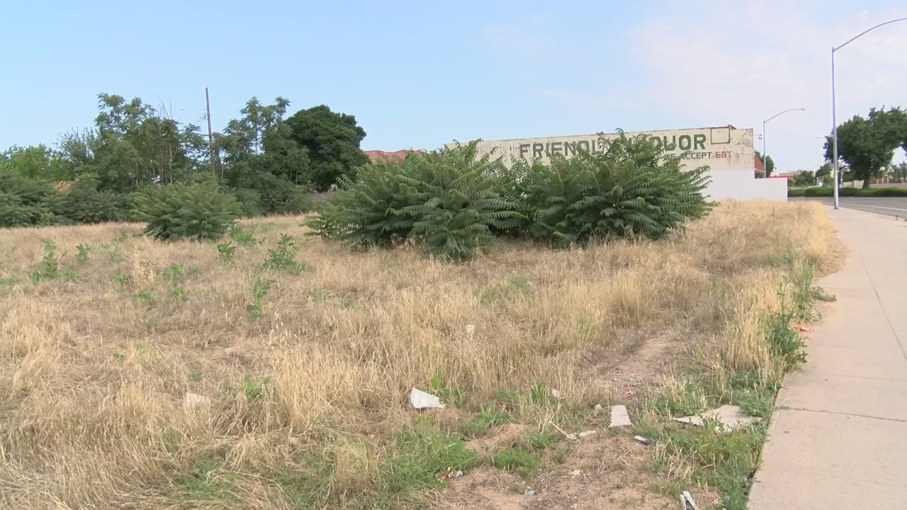 Abandoned vacant lot owners could get bill from Fire Department, in addition to code enforcement