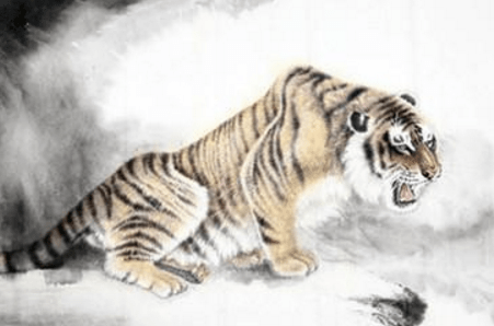 Tiger Horoscope 2018 - Predictions