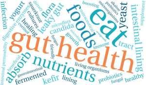 Gut Health: Prebiotics and Probiotics